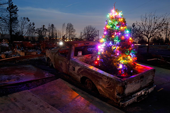 Picture of lit Christmas tree on the back of a truck surrounded by burned down houses